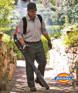 Dickies-Main-Image-with-logo1-252x300